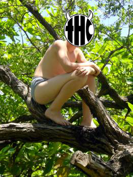 naked-thc-in-tree