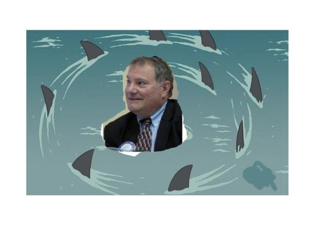matty shark circle2