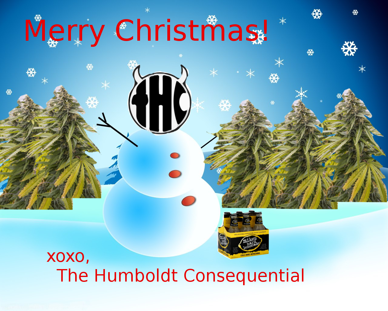 Merry Christmas from THC! (Plus our best Christmas card yet!) | The ...